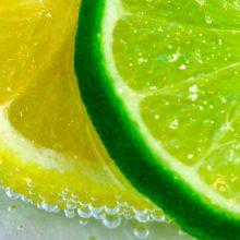 dieta del limon sexto dia